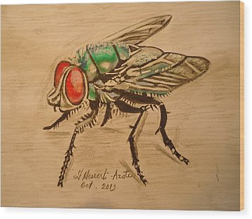 The Fly Wood Print by Fladelita Messerli-