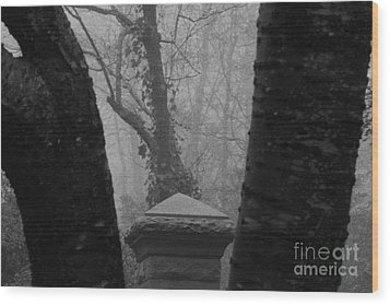 Wood Print featuring the photograph The Fog by Steven Macanka