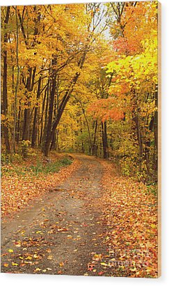 The Forest Road Wood Print by Jim McCain