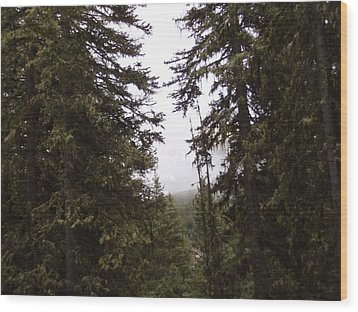 The Forest Wood Print by Yvette Pichette