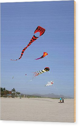 Wood Print featuring the photograph The Forgotten Joy Of Soaring Kites by Christine Till