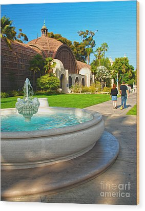 Botanical Building And Fountain At Balboa Park Wood Print by Claudia Ellis