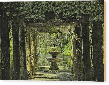 The Fountain Wood Print by Denis Lemay