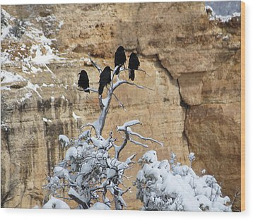 Wood Print featuring the photograph The Four Crows by Laurel Powell