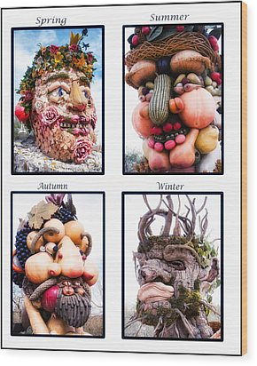 The Four Seasons Wood Print by Diane Wood
