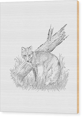 The Fox Wood Print by Carl Genovese