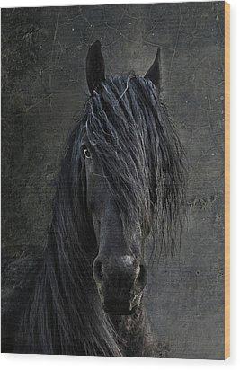 The Frisian Wood Print by Joachim G Pinkawa