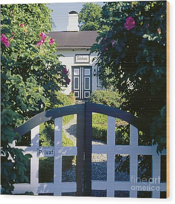 The Front Garden Wood Print by Heiko Koehrer-Wagner