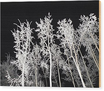 Wood Print featuring the photograph The Frost Gleams By Night by Brian Boyle