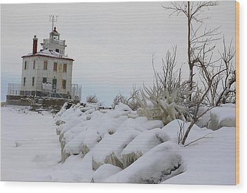 The Frozen Sentinel Wood Print by Frederic Vigne
