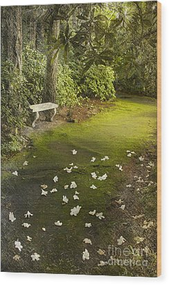 The Garden Bench Wood Print