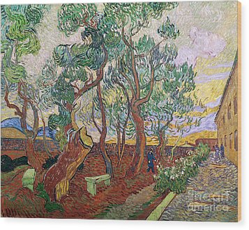 The Garden Of St Pauls Hospital At St. Remy Wood Print by Vincent Van Gogh