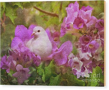 The Garden Of White Dove Wood Print by Olga Hamilton