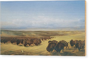 The Gathering Of The Herd Wood Print by William Jacob Hays
