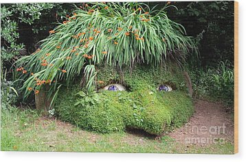 The Giant's Head Heligan Cornwall Wood Print
