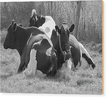 The Girls Wood Print by Jim Rossol
