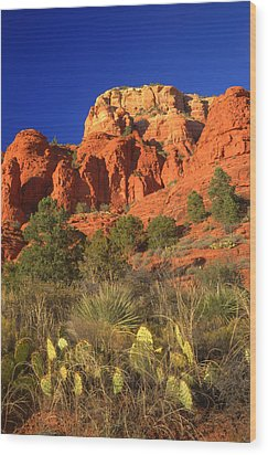 The Glory Of The Desert Red Rocks 1 Wood Print