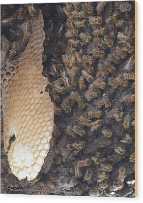 The Golden Hive  Wood Print by Shawn Marlow