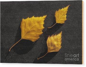 The Golden Leaves Wood Print by Veikko Suikkanen