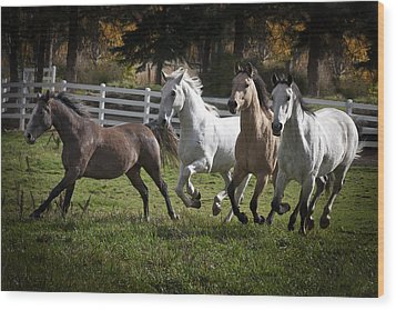 The Goldendale Four Wood Print by Wes and Dotty Weber