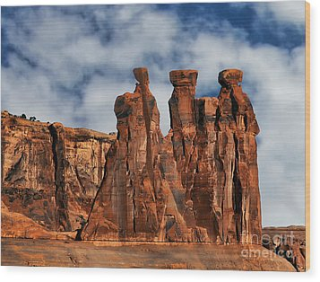 Wood Print featuring the photograph The Gossips by Shirley Mangini