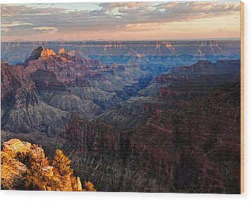 The Grand Canyon Wood Print by Alexis Birkill