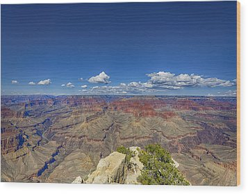 The Grand Canyon--another Look Wood Print by Angela A Stanton
