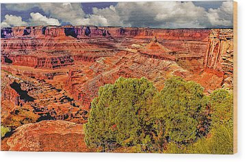 The Grand Canyon Dead Horse Point Wood Print by Bob and Nadine Johnston