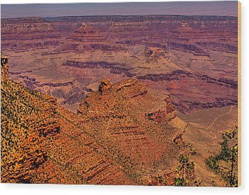 The Grand Canyon Iv Wood Print by David Patterson