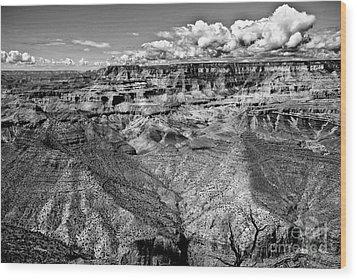 The Grand Canyon Wood Print by Bob and Nadine Johnston