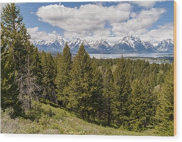 The Grand Tetons From Signal Mountain - Grand Teton National Park Wyoming Wood Print by Brian Harig