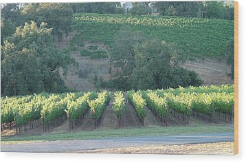 Wood Print featuring the photograph The Grape Lines by Shawn Marlow