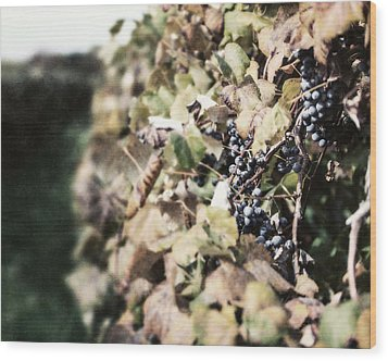The Grapevines Wood Print by Lisa Russo