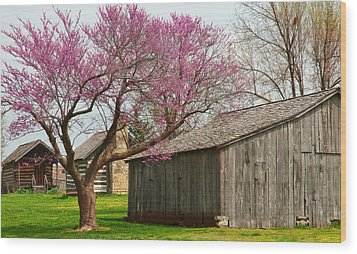 The Gray Campbell Farmstead Wood Print by Lena Wilhite