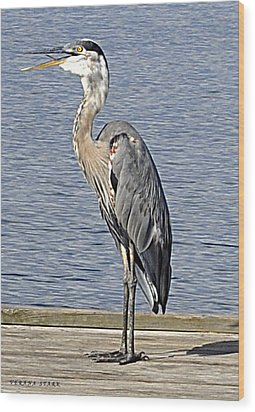 The Great Blue Heron Photo Wood Print