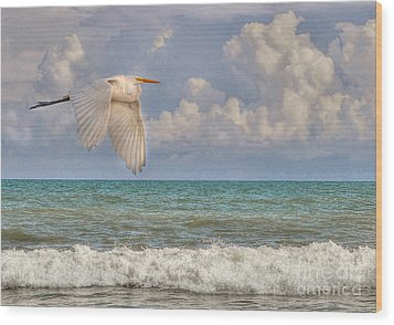 The Great Egret And The Ocean Wood Print