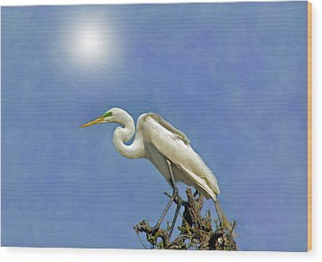 The Great Egret Wood Print by Marion Johnson