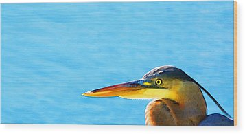 The Great One - Blue Heron By Sharon Cummings Wood Print by Sharon Cummings