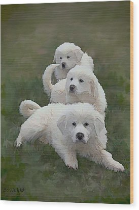 The Great Pyranise Pups  Wood Print by Bonnie Willis