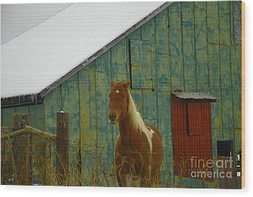 The Green Barn Wood Print