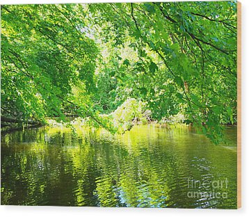 The Green Mirrored Cove Wood Print