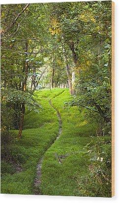 The Green Path Wood Print