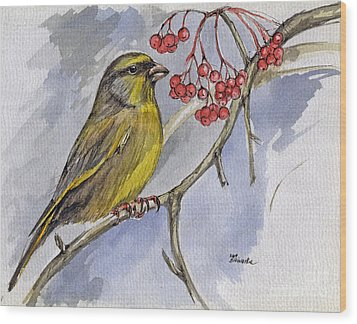 The Greenfinch Wood Print by Angel  Tarantella