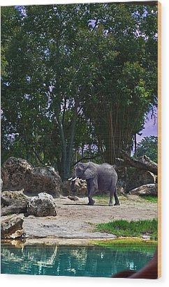 The Grey Beast Wood Print by Ryan Crane