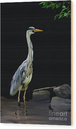 The Grey Heron Wood Print by Brian Roscorla