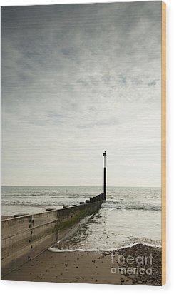 The Groyne Wood Print by Anne Gilbert