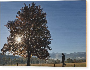 Wood Print featuring the photograph The Guiding Light In Cades Cove by Tyson and Kathy Smith
