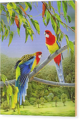 The Happy Couple - Eastern Rosellas  Wood Print by Frances McMahon