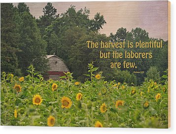 The Harvest Is Plentiful Wood Print by Sandi OReilly
