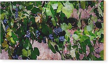 The Harvest Line I Wood Print by Ken Evans
